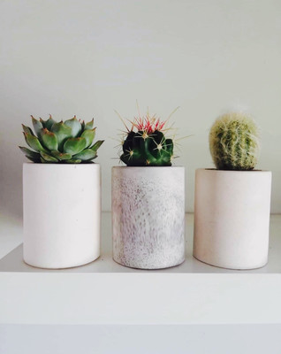 Set of 3 Mini Pots