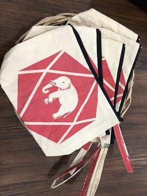 SCG Reusable Bag
