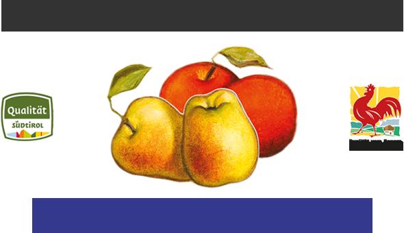 Widum Baumann - Dr. Thomas Widmann