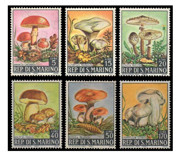 Сан-Марино. Грибы. Серия из 6 марок SM1967/12-17