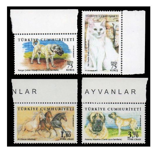 Турция. Домашние животные. Серия из 4 марок TR2017/50-53