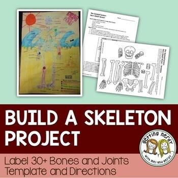 Skeletal System - Skeleton Project