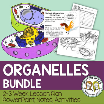 Cell Organelles Structure & Function - PowerPoint & Handouts