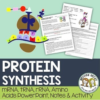 Protein Synthesis - mRNA, DNA, rRNA PowerPoint and Handouts
