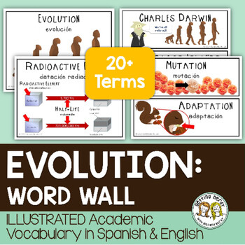Evolution - Word Wall