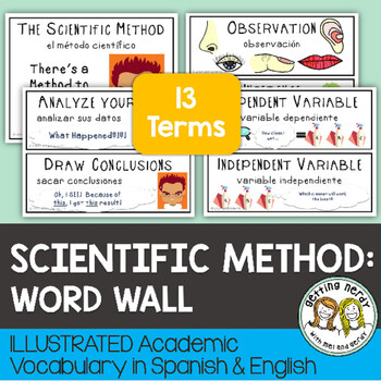 Scientific Method - Word Wall