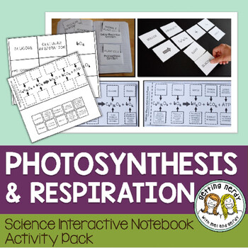 Science Interactive Notebook - Respiration and Photosynthesis