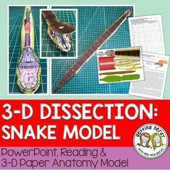 Snake Paper Dissection - Scienstructable 3D Dissection Model
