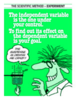 Scientific Method - Experiment