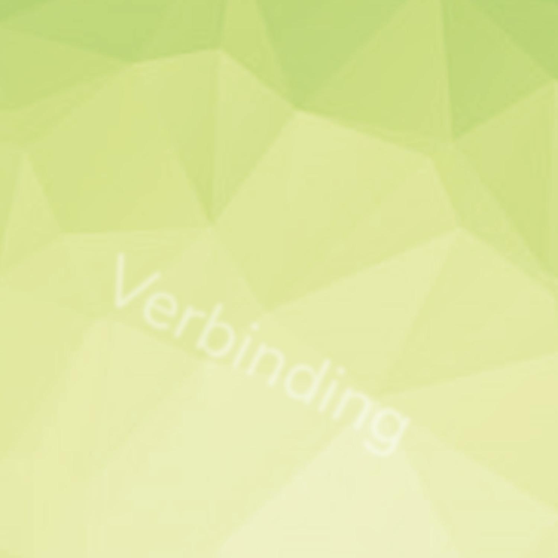 VC Kiezen voor Veerkracht of Burn out