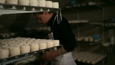 Lot de 2 fromages de chèvre bio