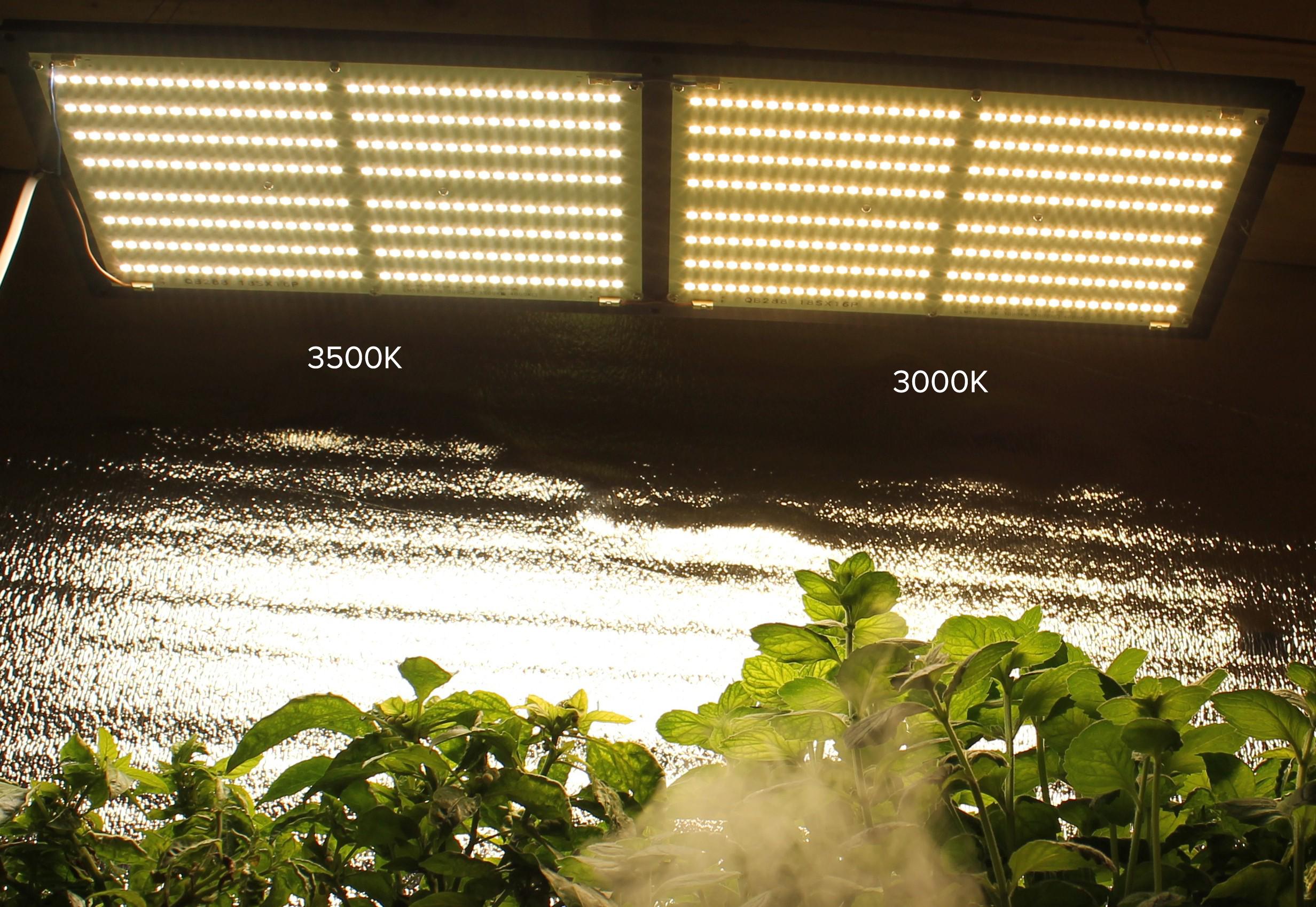 Quantum Board 120W V-1 GROW LED