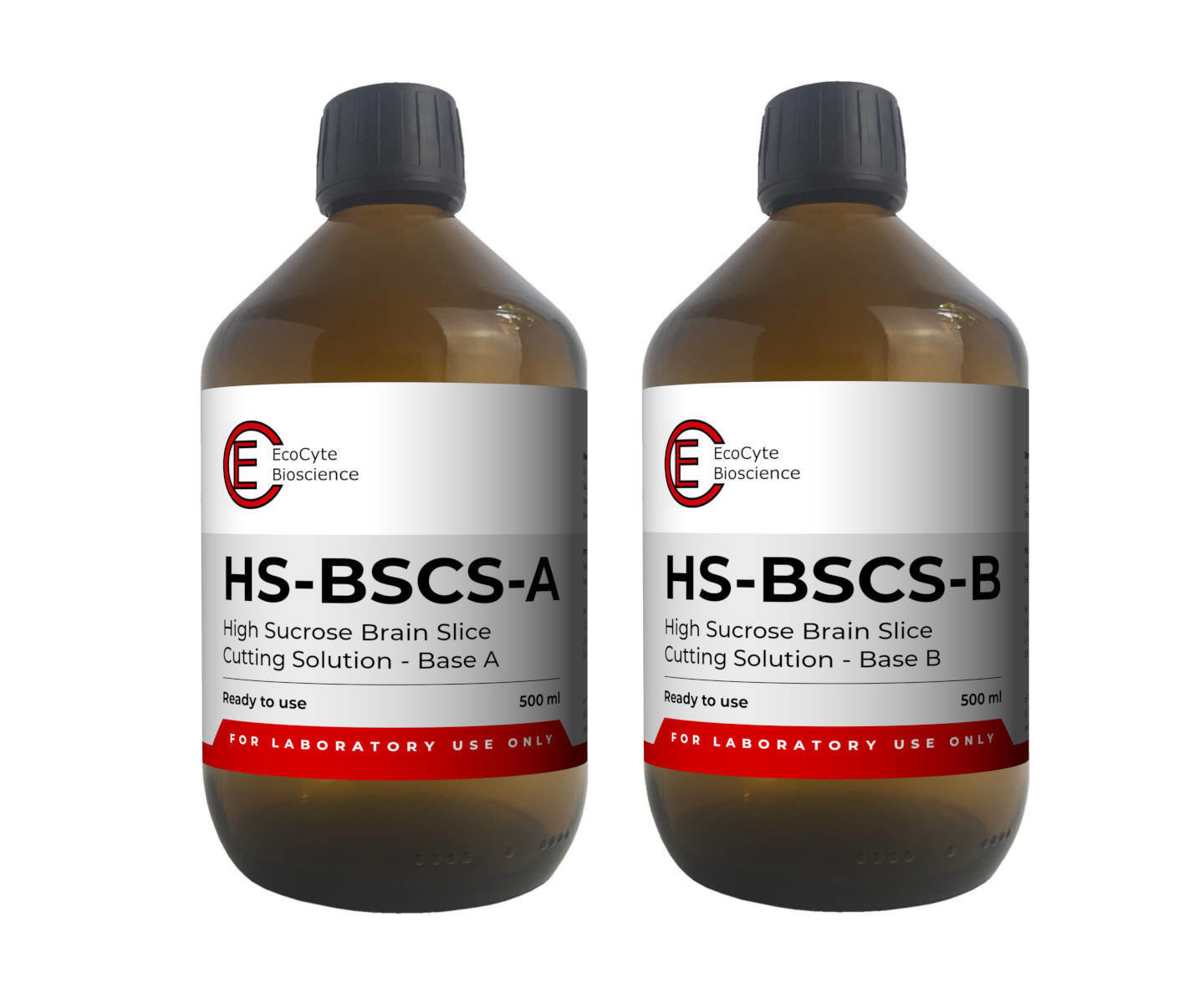 HS-BSCS – High Sucrose Brain Slice Cutting Solution