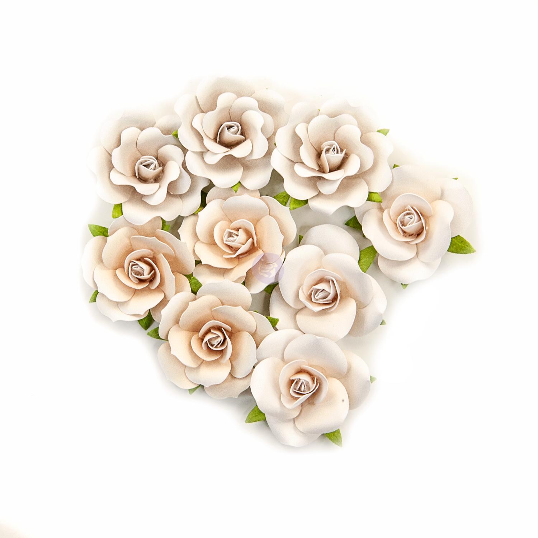 Dry Desert - Pretty Pale Flowers - Prima