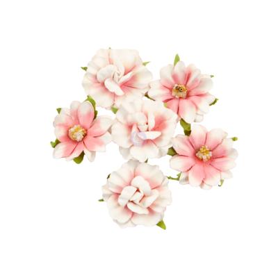 Big Sur - Golden Coast Flowers - Prima