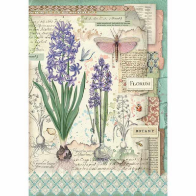 Botanic Bulbs - A4 -Stamperia Rice Paper