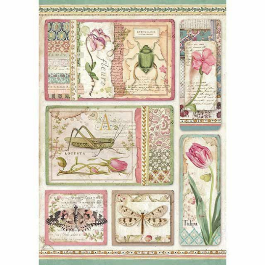 Botanic Cards - A4 -Stamperia Rice Paper