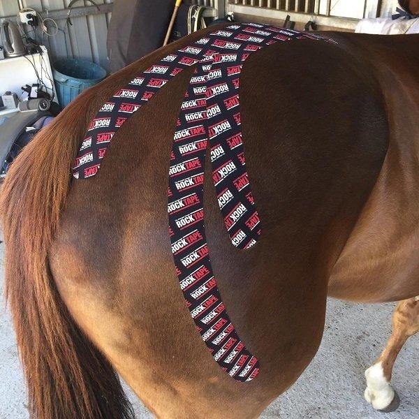 RockTape, Equine, 5см x 5м, логотип (для лошадей)