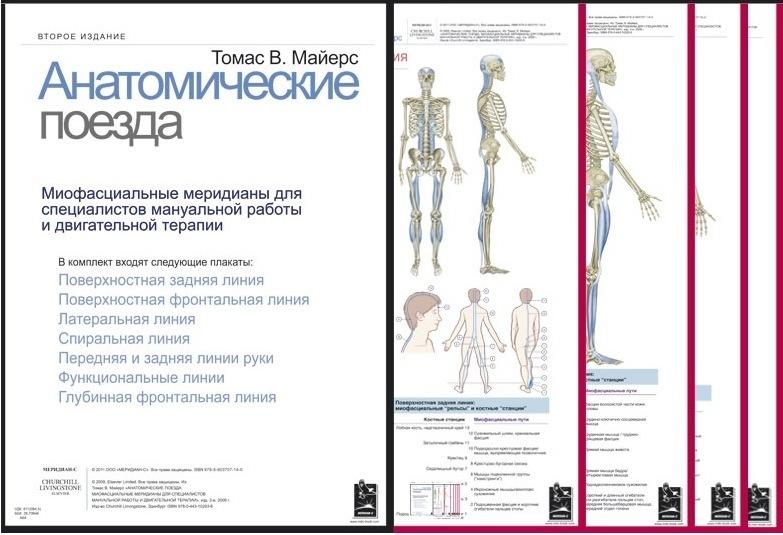 Плакаты, Анатомические поезда, Томас В. Майерс