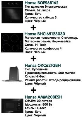 Комплект Hansa + СВЧ