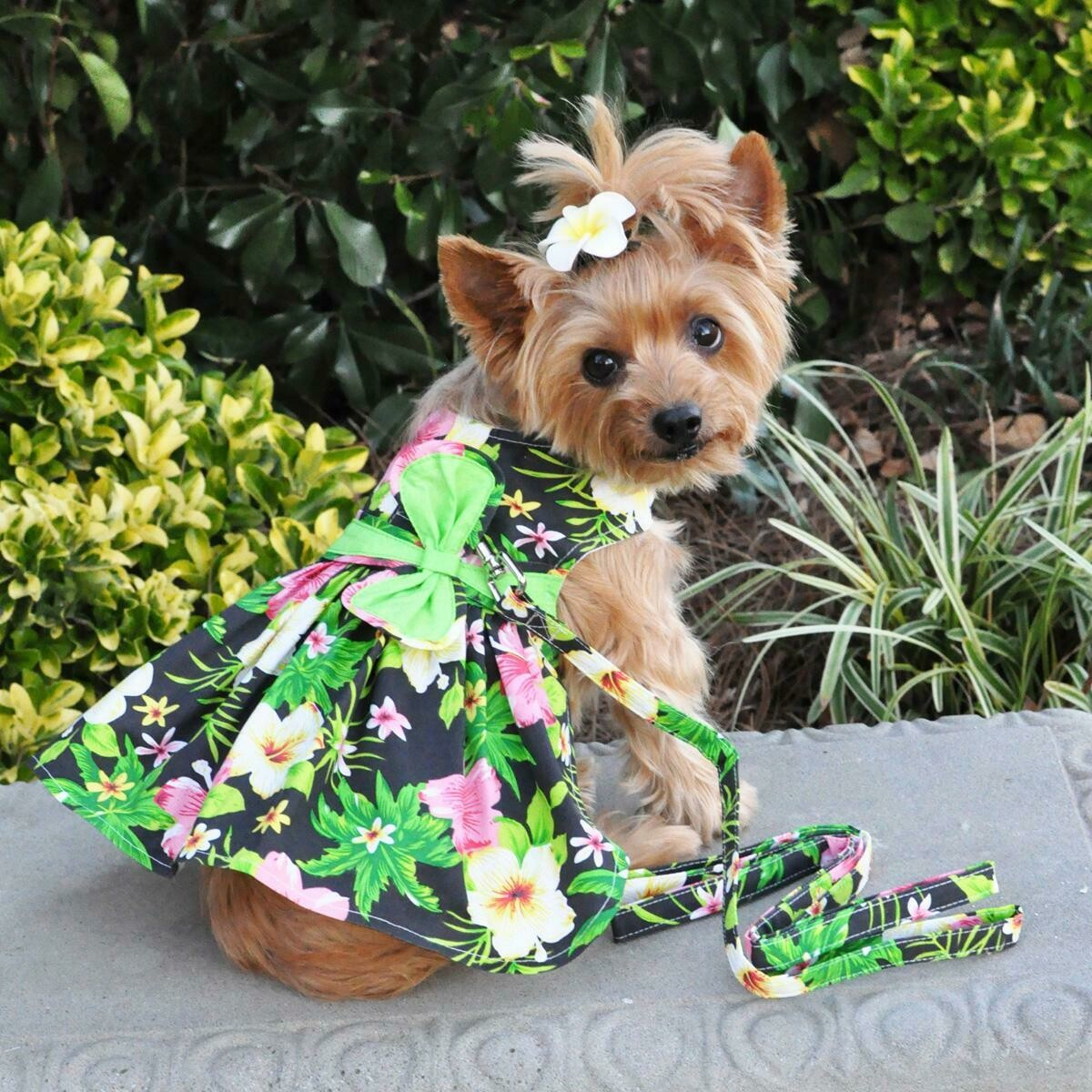 Twilight Black Hawaiian Hibiscus Dog Dress with Leash