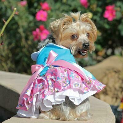 Pink and Blue Plumeria Floral Dog Dress