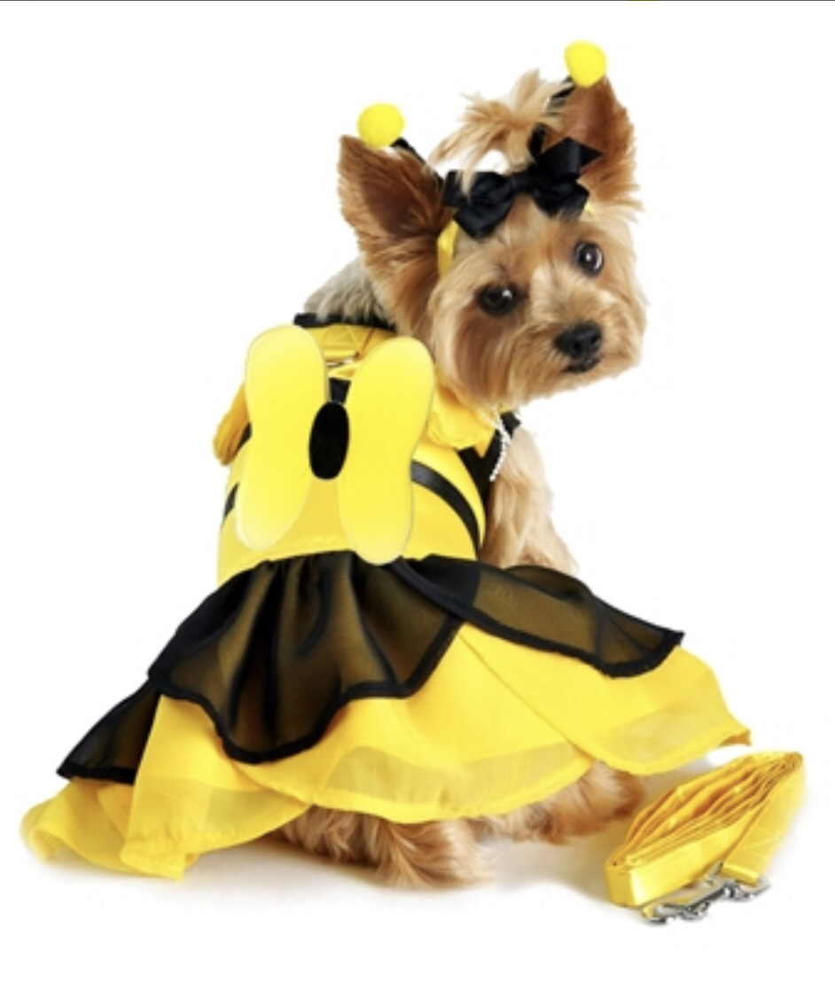 Bumblebee Dress Costume