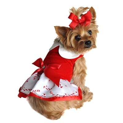 Holiday Dog Harness Dress (Candy Canes)