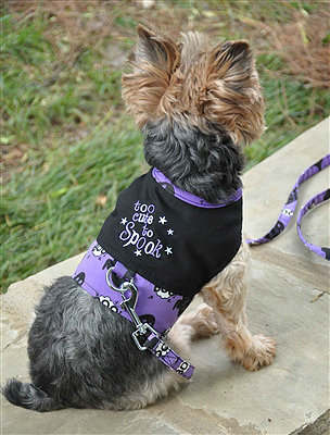 """Too Cute to Spook"" Harness"