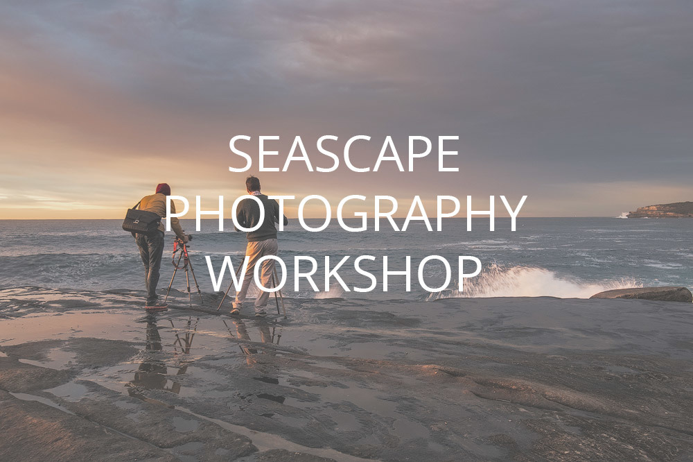 Seascape Workshop SW1