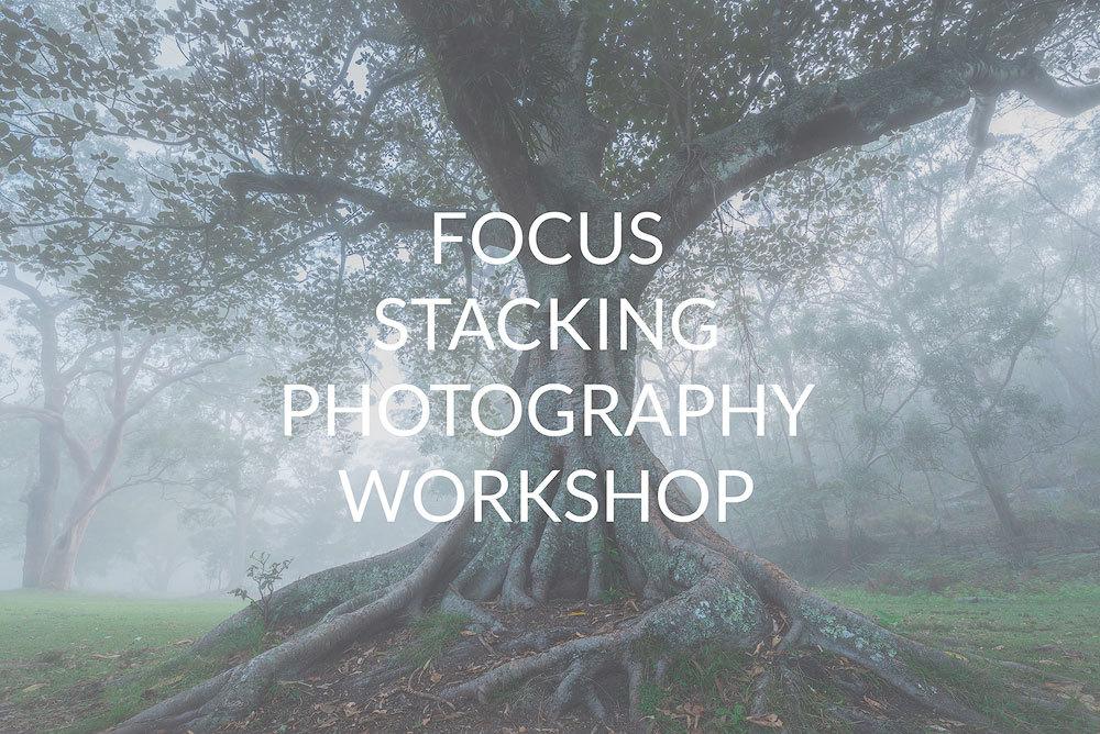 Focus Stacking Workshop ADV3
