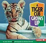 A Tiger Cub Grows Up (Baby Animals)