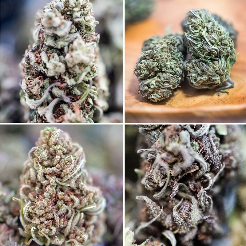 Retail Sampler Pack - (4) 1oz each, Four Cultivars