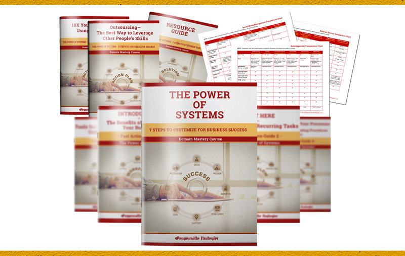 The Power of Systems - 7 Steps to Systemize for Business Success