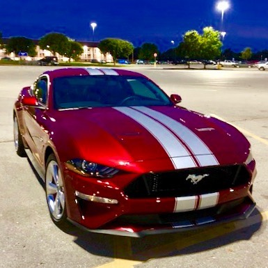 2010 - Up Mustang Shelby Style Rally Stripes