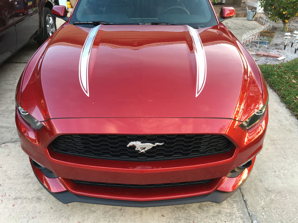 2015 - 2018 Mustang Hood Spear Accent Graphics