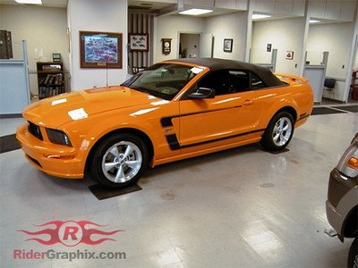 2005 - 2009 Mustang 69 Boss 302 Style Reverse C Stripe Kit (Custom Style)