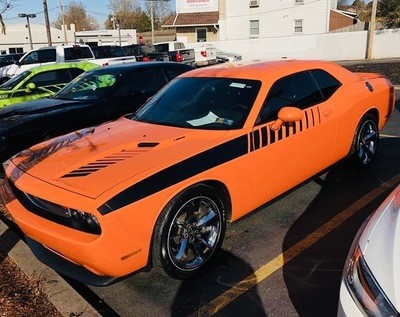 2008 - Up Dodge Challenger Strobe Accent Stripe Graphic Kit