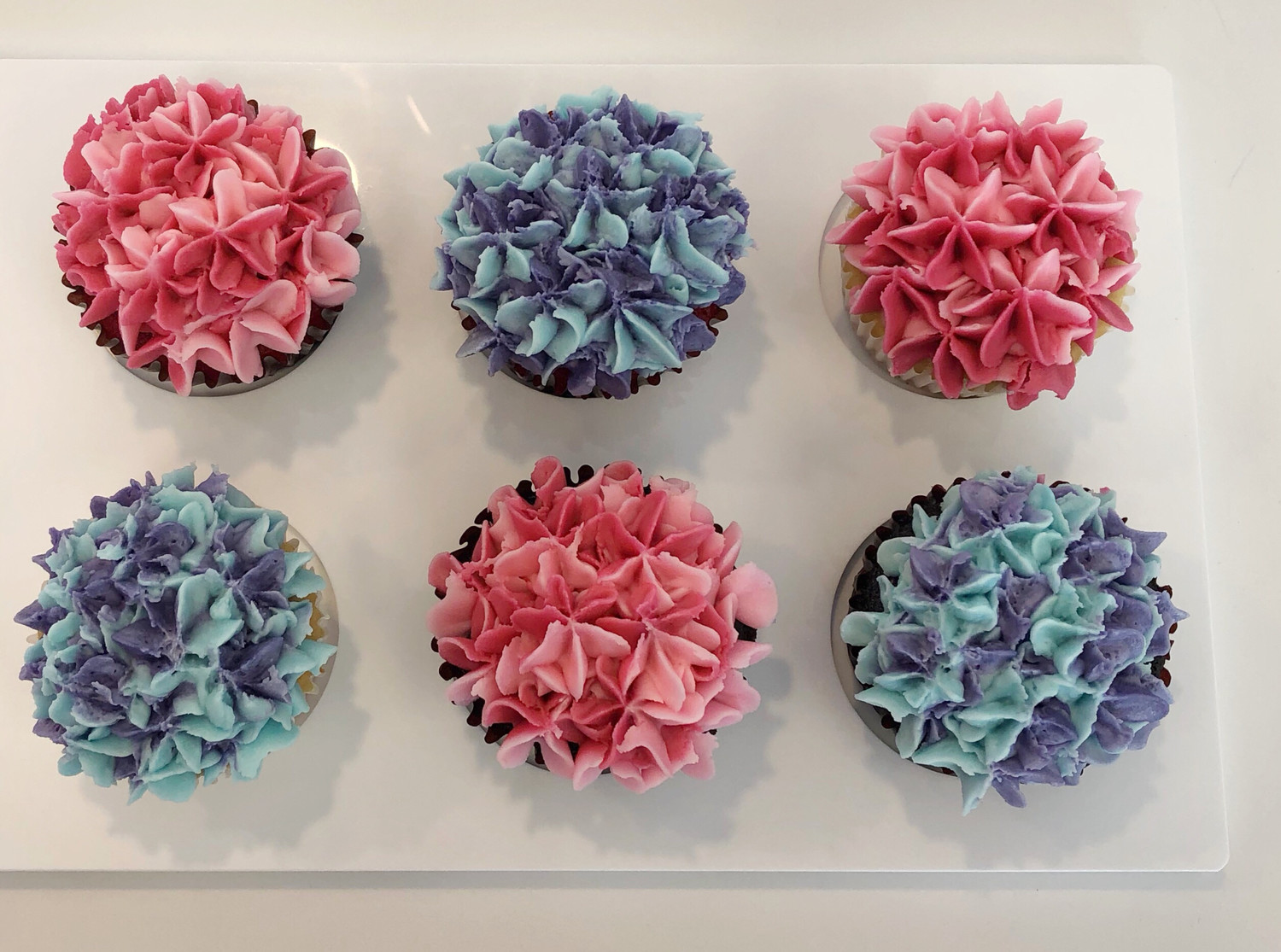Hydrangea Decorated Cupcakes