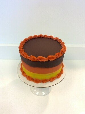 Fall Color Stripe Cake