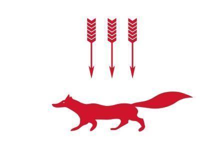 Флаг Саранск