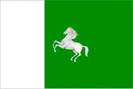 Флаг Томск
