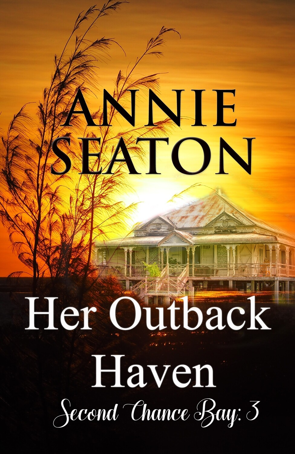 E Book: Her Outback Haven