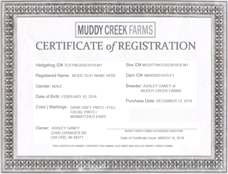 Hedgehog Registration Certificate