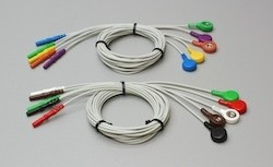 Recording Leads - 10 Pin to Snap Connectors