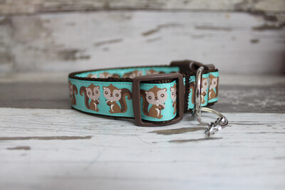 Squirrel Collar