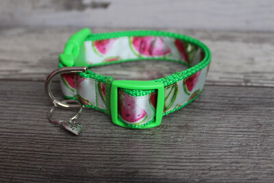 Watercolor Watermelon Collar
