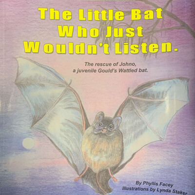 The Little Bat Who Just Wouldn't Listen Storybook