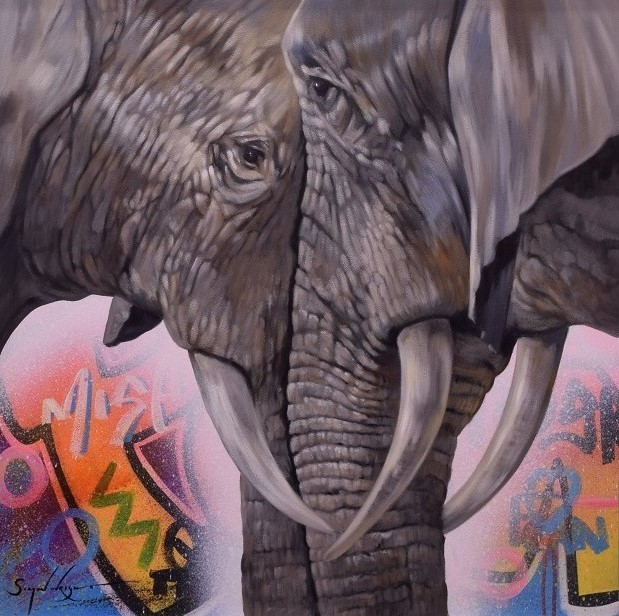 Face To Face - Elephants