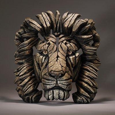 Lion - Savannah